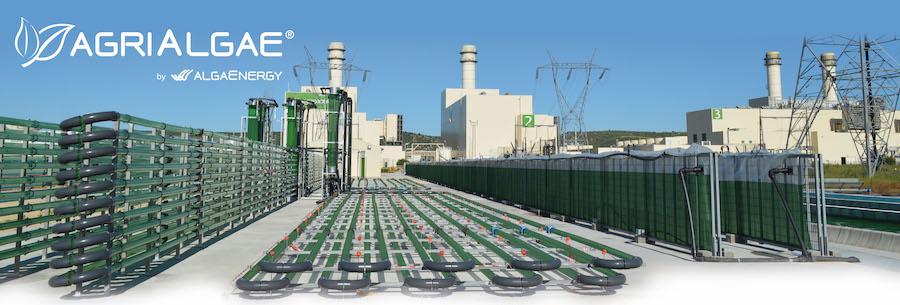 AlgaEnergy migliora il tuo raccolto