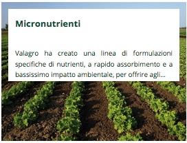 Micronutrienti Valagro
