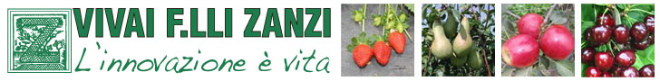 Vivai Zanzi