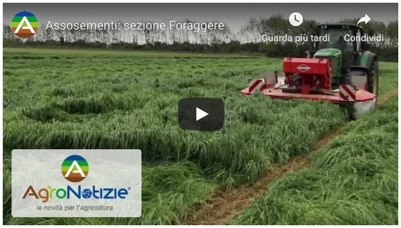 Assosementi sezione Foraggere - Video