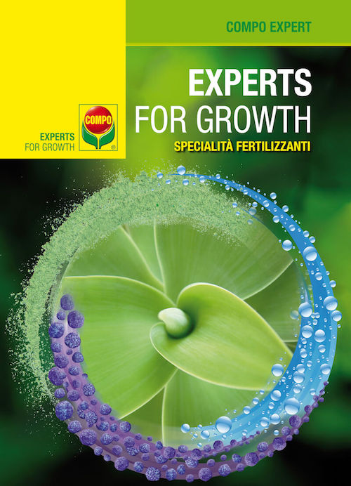 Compo Expert: Experts for Growth