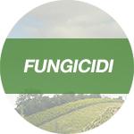 Fungicidi Rotam